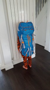 22-6-16 large rucksack back view -aldi camping