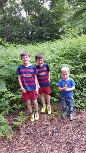 29-6-16 woodland walk at paradise park