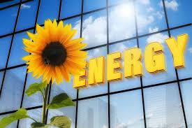 24-8-16 Switching Utilities Sunflower