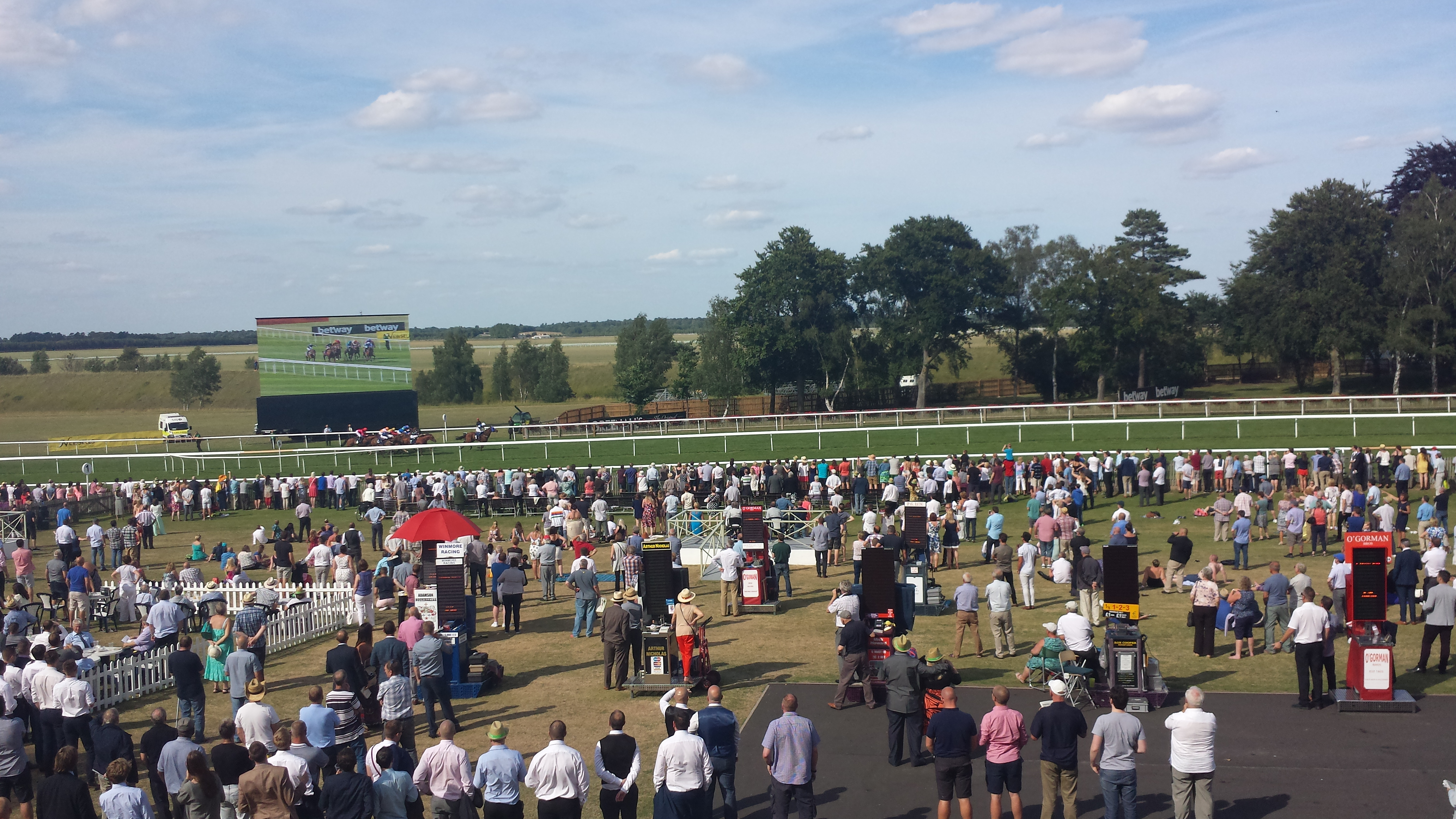 Fun summer day out at the Races