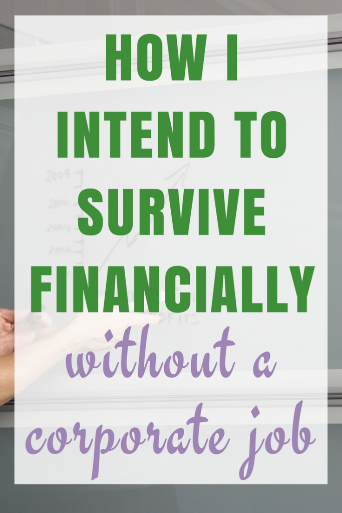 My Plan on how I am going to survive financially without a corporate job...