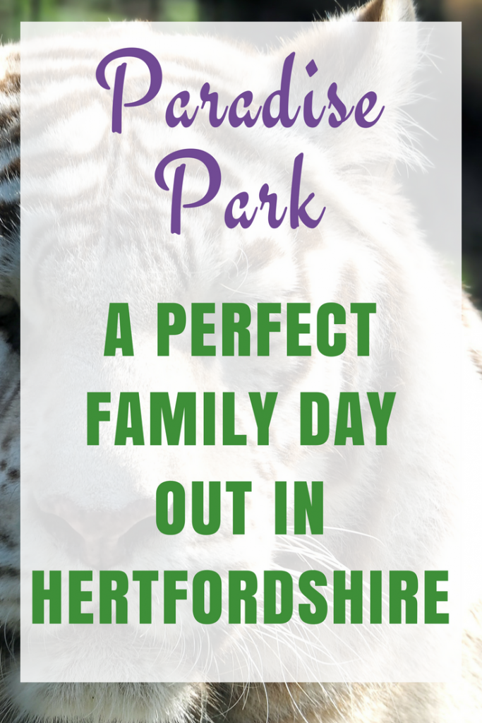 Paradise Park – A day out with the family in Hertfordshire