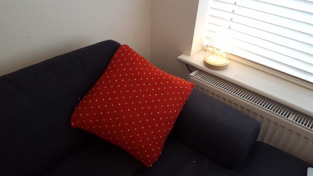 15-12-16-aldi-cushion