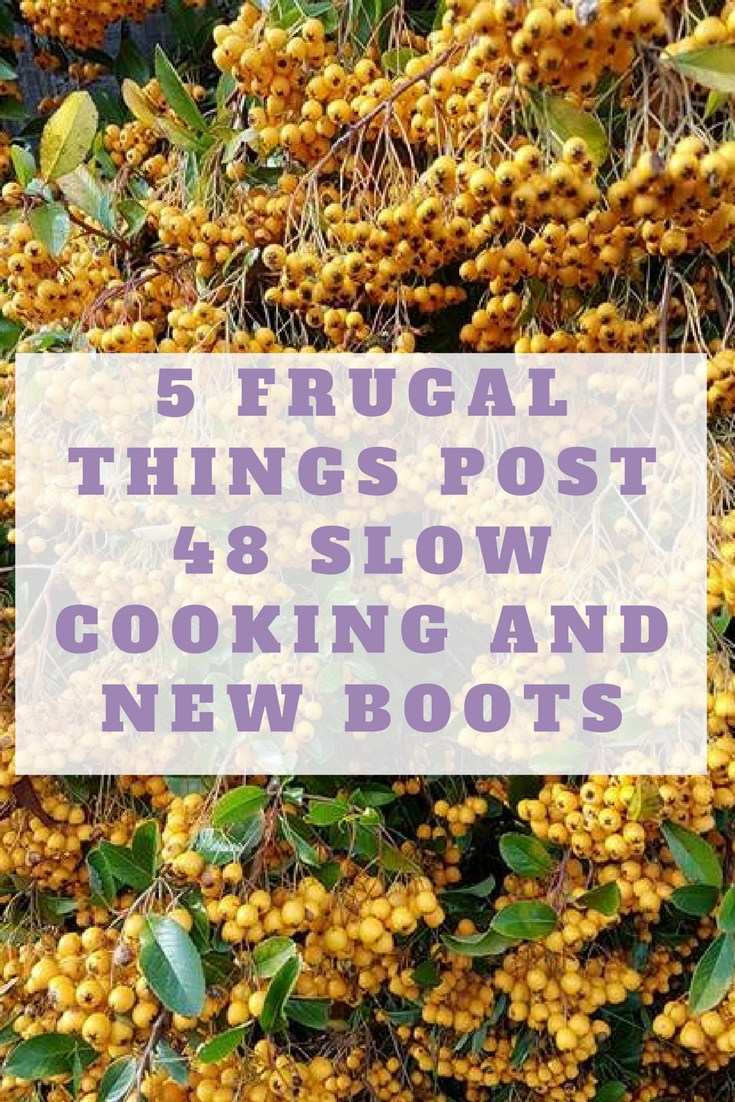 5 frugal things post 48
