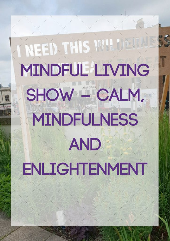 Mindfulness and Enlightenment