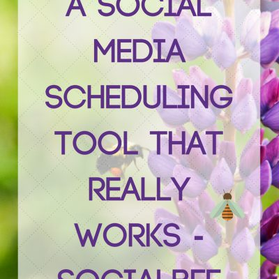 A Social Media Scheduling Tool that REALLY works – Socialbee