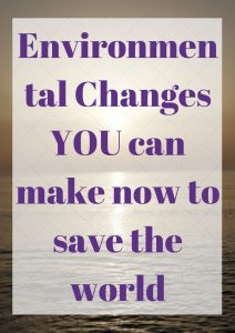 Environmental Changes YOU can make now to save the world