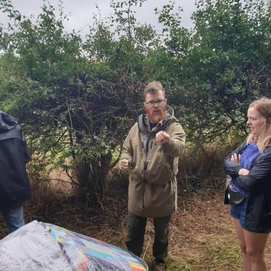 wild thyme outdoors